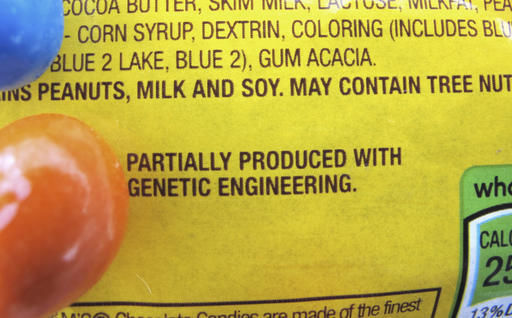 Report: Genetically altered food safe but not curing hunger