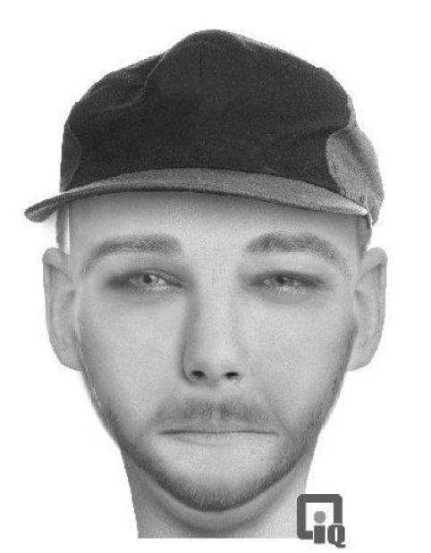 Sexual assault suspect
