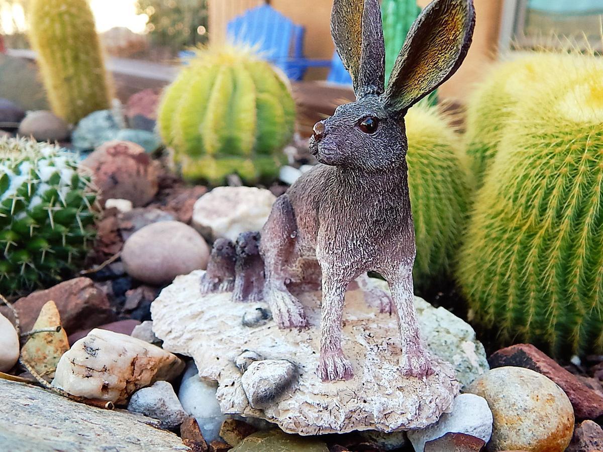 Miniature garden with desert critters