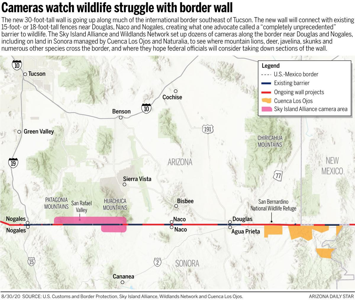 Tracking wildlife on the international border
