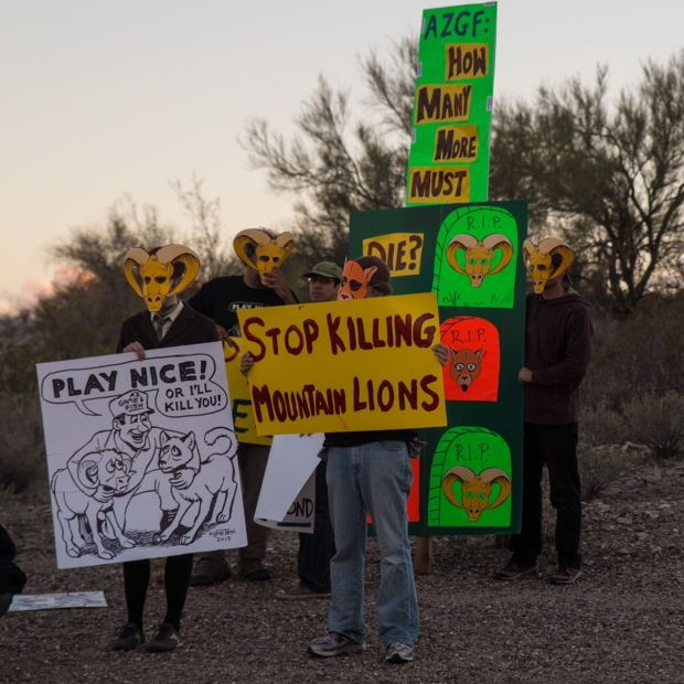 Photos friends of wild animals protest bighorn project for Fish and game office near me