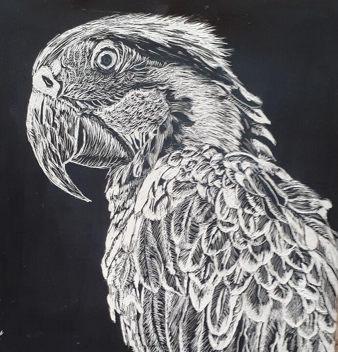 Robbie-Parrot.jpg