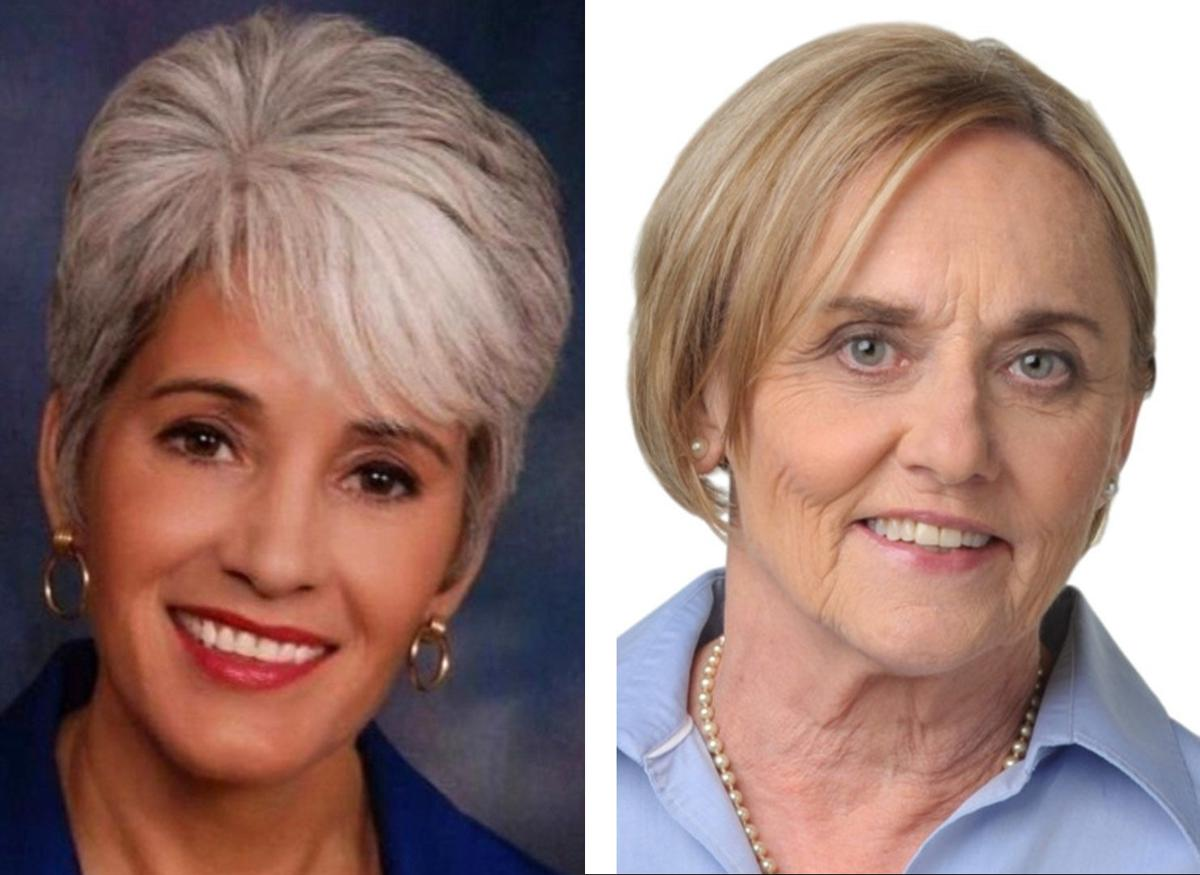 2020 Elections: Pima County Supervisors, District 3