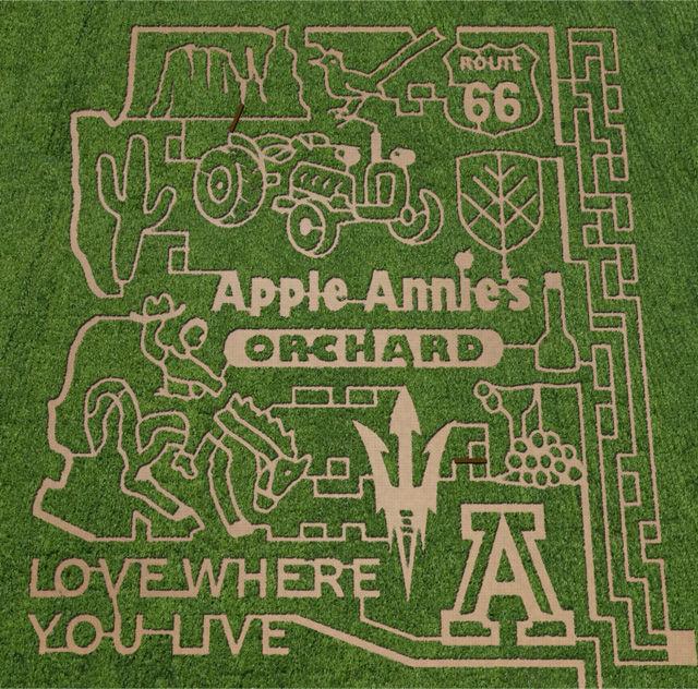 Apple Annie's Corn Maze