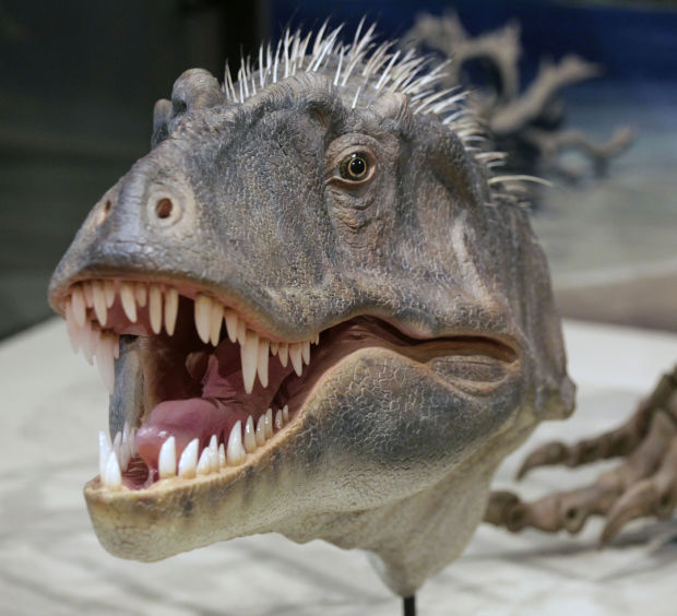 New dinosaur discovered in southern Utah