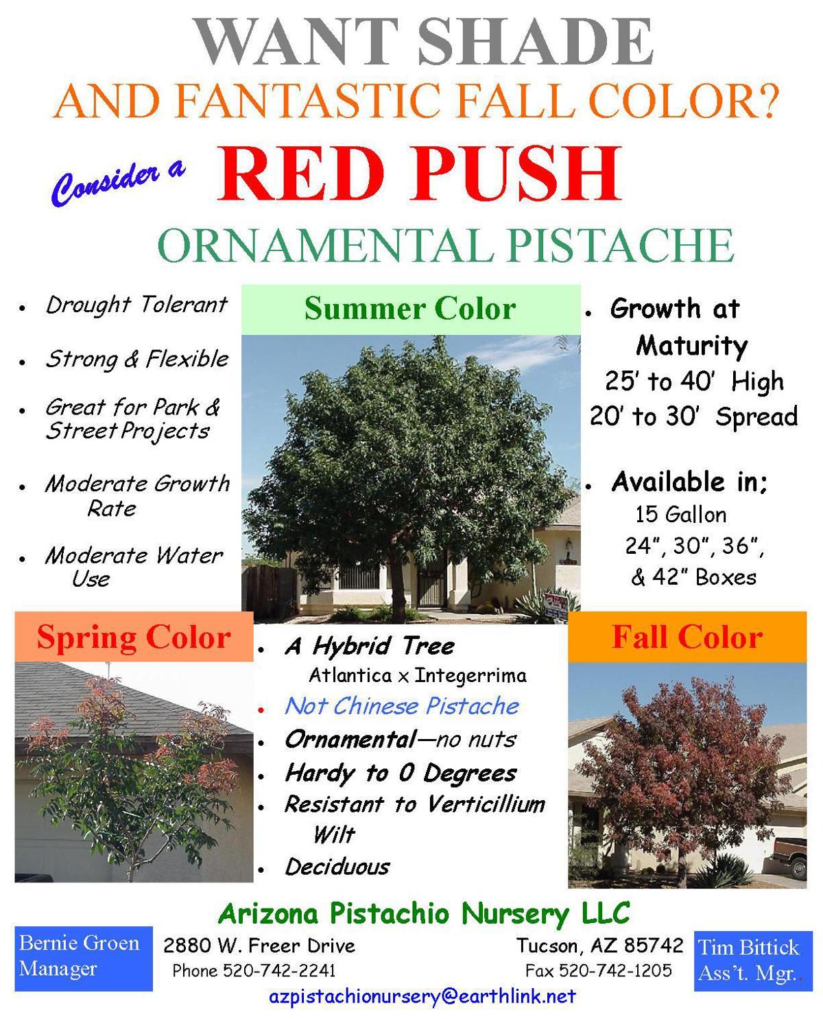 Red Push Pistache
