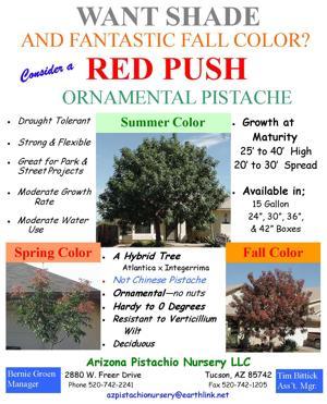 Red Push.jpg