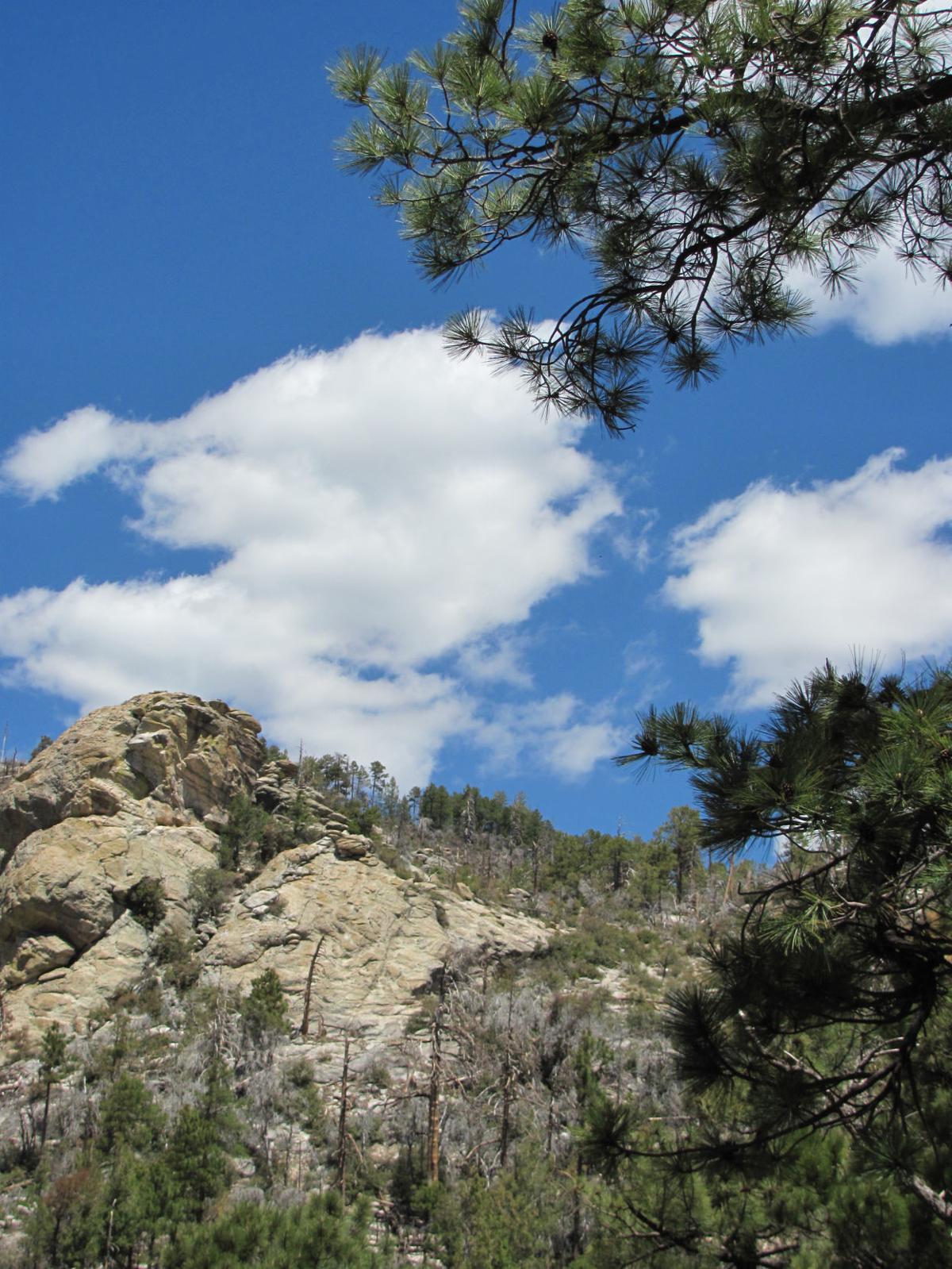 Palisade Trail