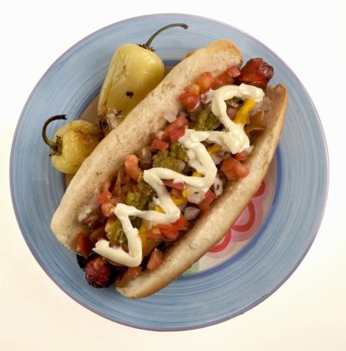Sonoran-dog fans sought for filming of travel show