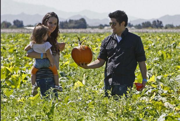 Pumpkin Patch and Farm Festival