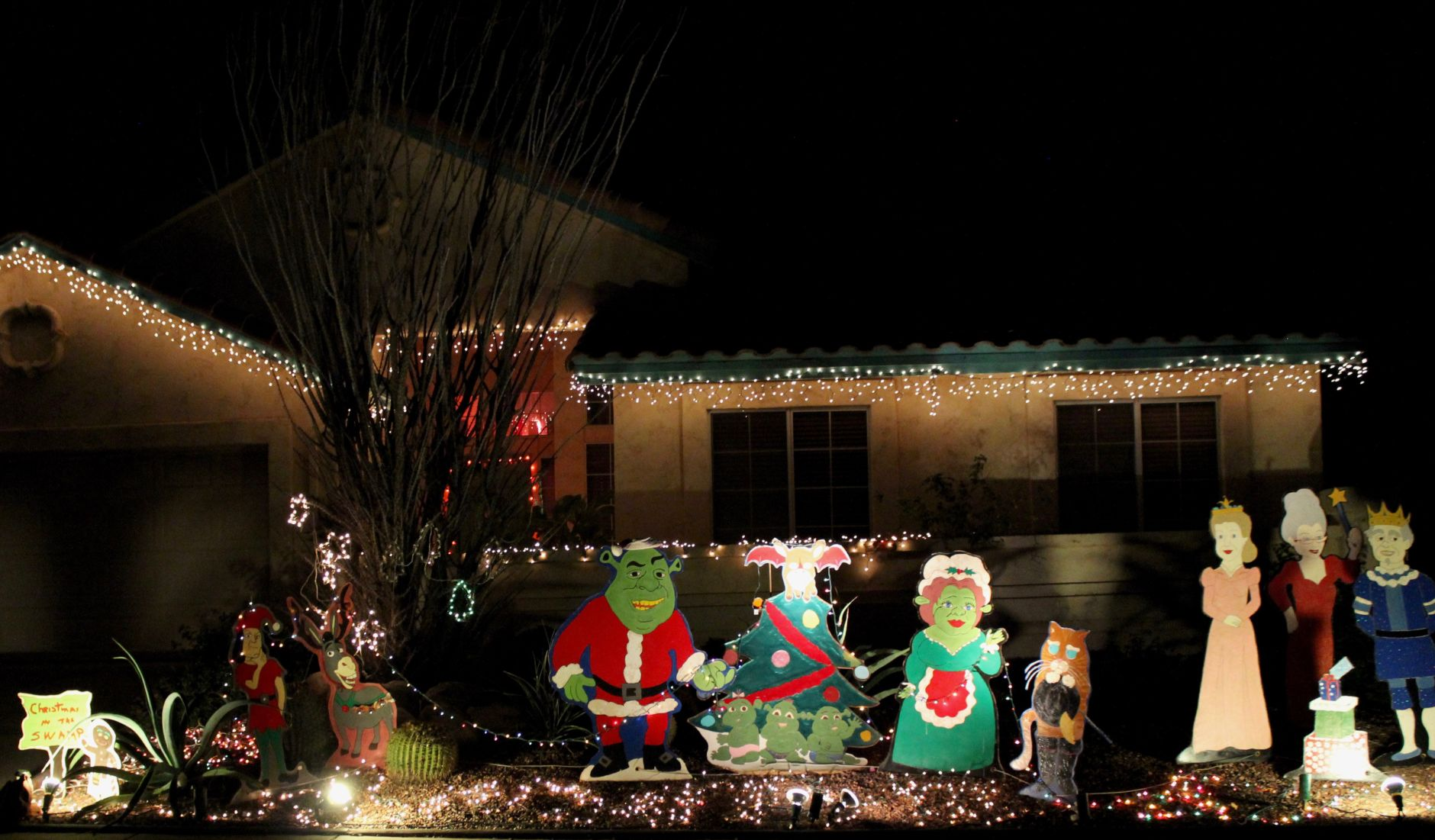This Northwest Tucson Neighborhood Combines Disney And Christmas Lights For  Pure Magic | Tucson Life | Tucson.com