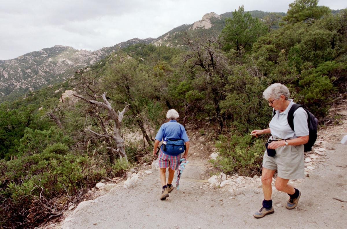 Trails on the eastern slopes of the Santa Catalina Mountains