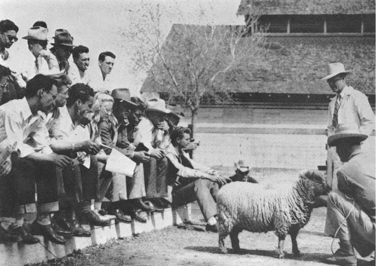 UA farm, 1946