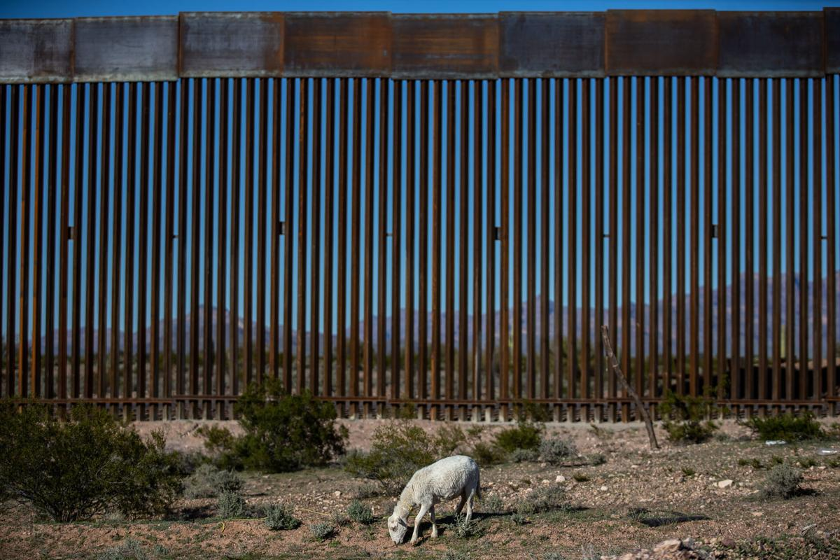 74 more miles of border wall set to go up in Arizona, feds say