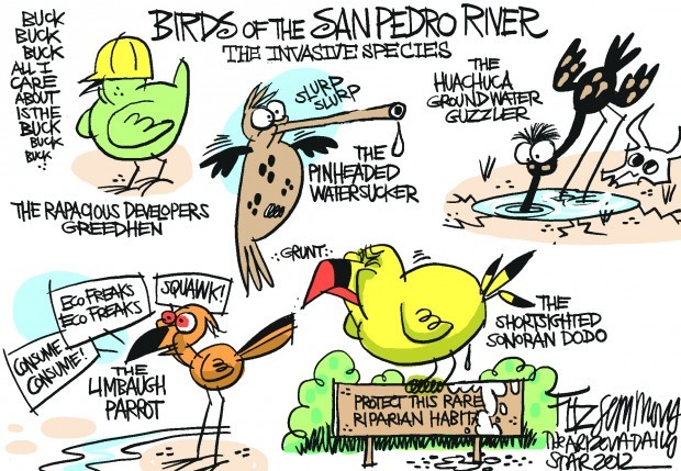 Daily Fitz Cartoon: Wildilfe of the beautiful San Pedro