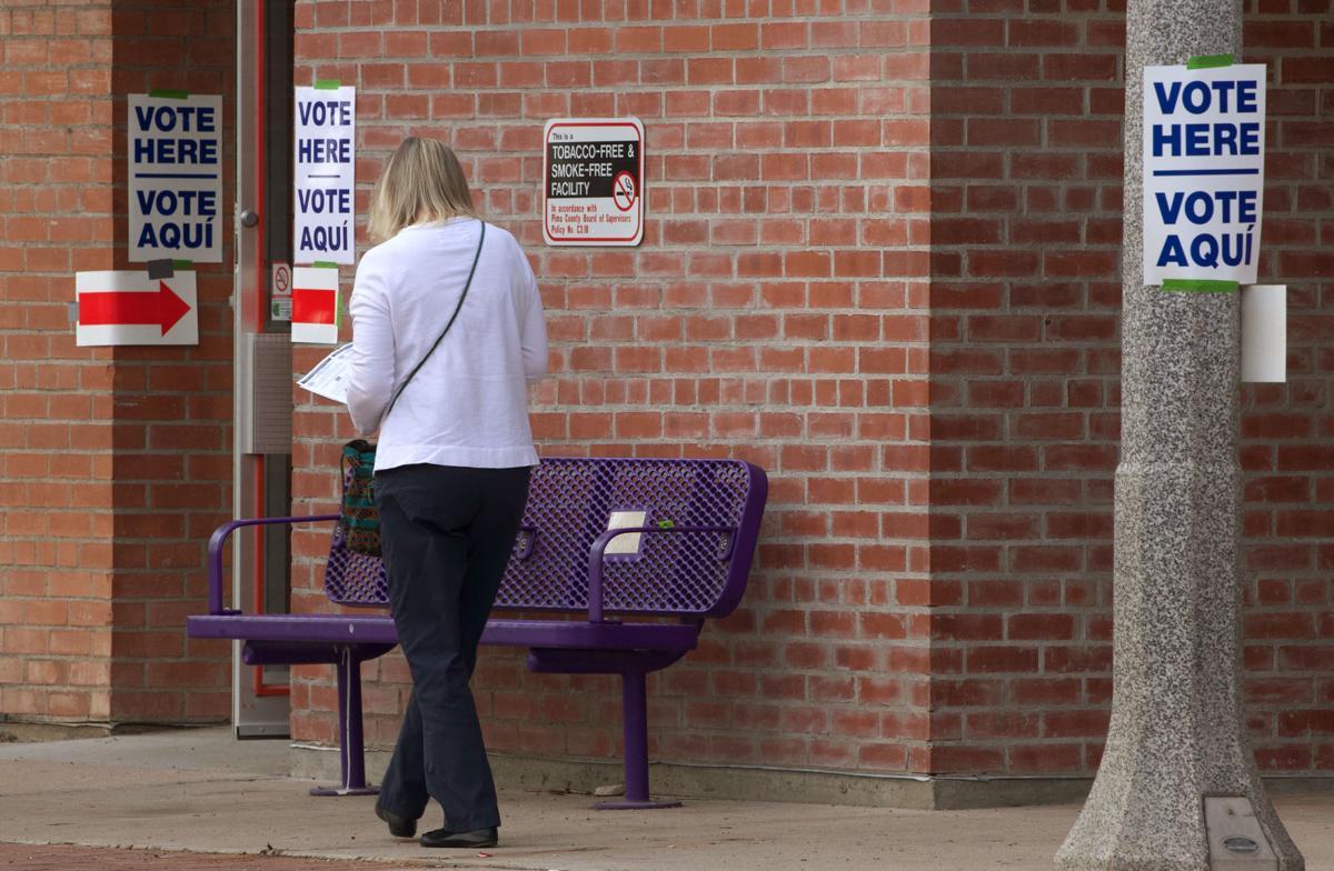 Arizona Democratic Primary Election