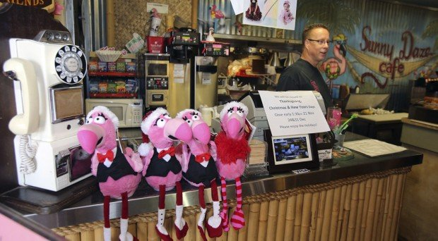 Tucson Oddity: Faux flamingo flock keeps cafe in the pink