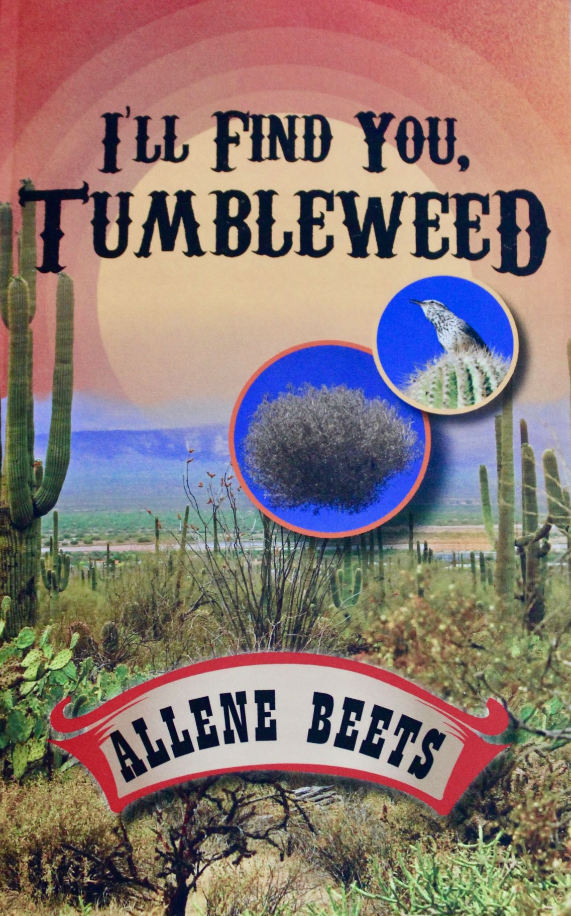 I'll Find You, Tumbleweed