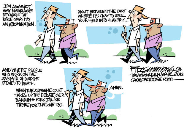 Daily Fitz Cartoon: The case against gay marriage