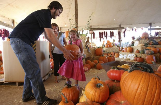 Brian and Kelly's pumpkin patch