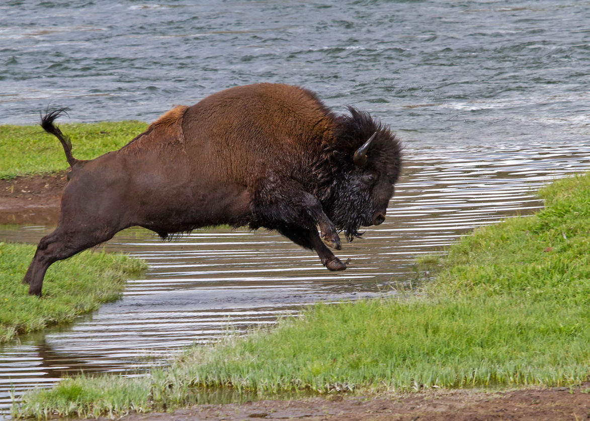 National Park Travel Photo Contest entries