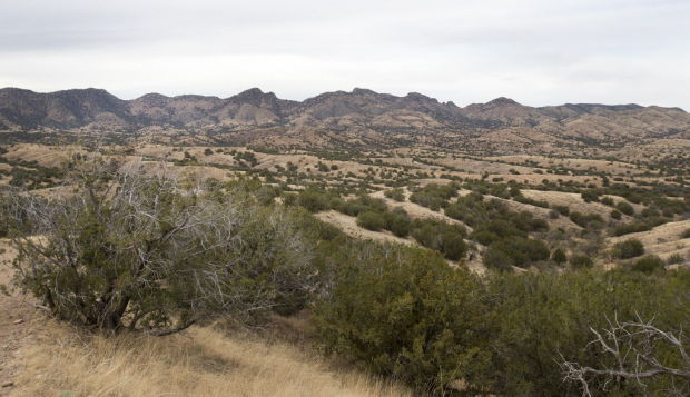 Rosemont Mine