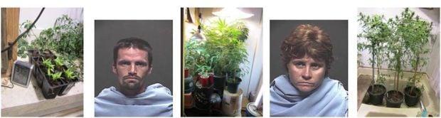 Burglary investigation leads to pot bust in Marana