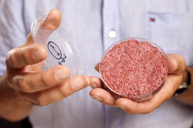 Stem cell burger, anyone?