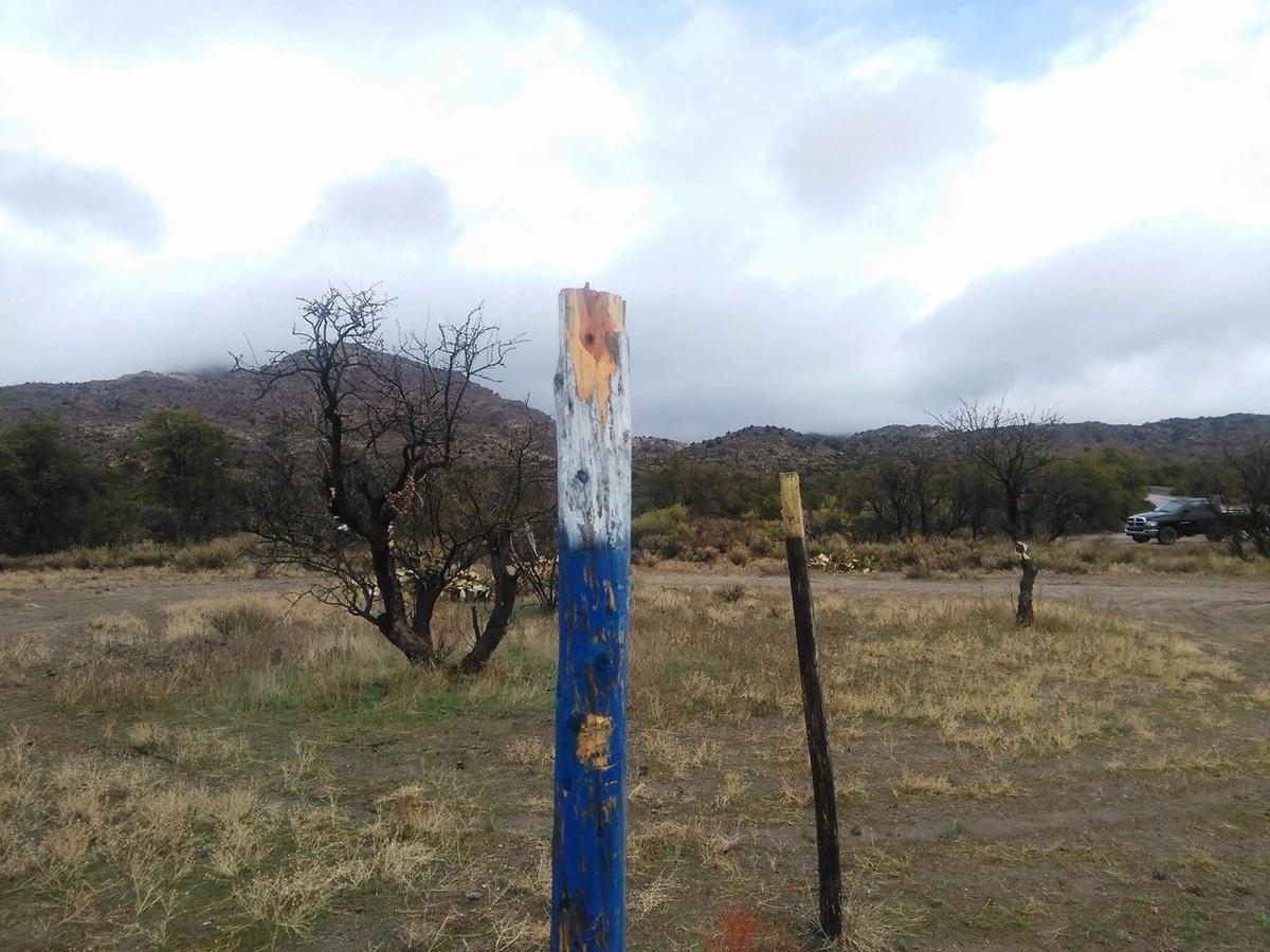 Oak Flat vandalism