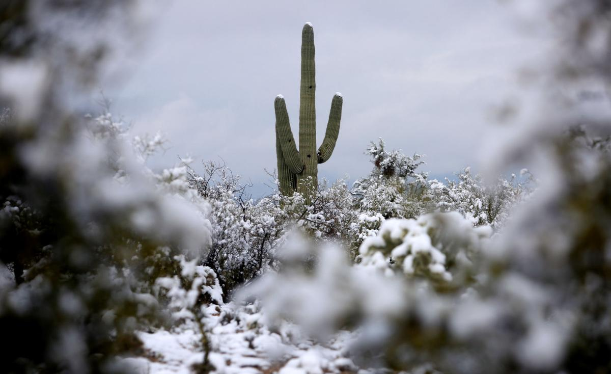 Tucson Weather Temperatures To Warm Up Rain Expected