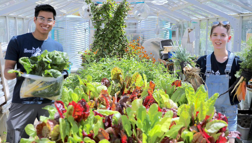 UA Garden program