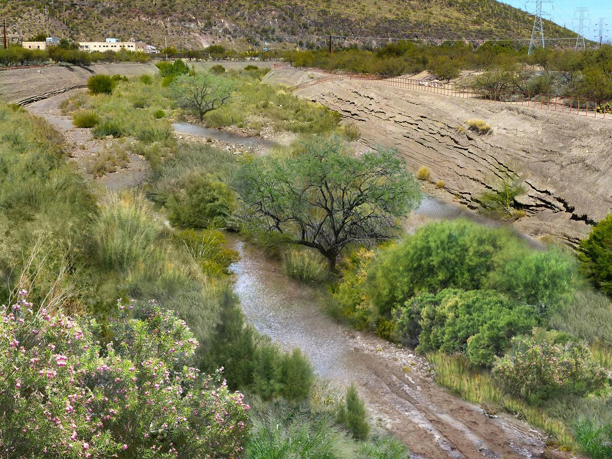 Santa Cruz River with effluent