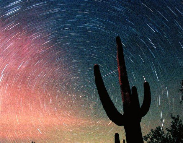 Saguaro's parties appeal to stargazers