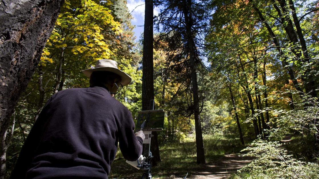 Photos: Leaves are changing in the Santa Catalina Mountains