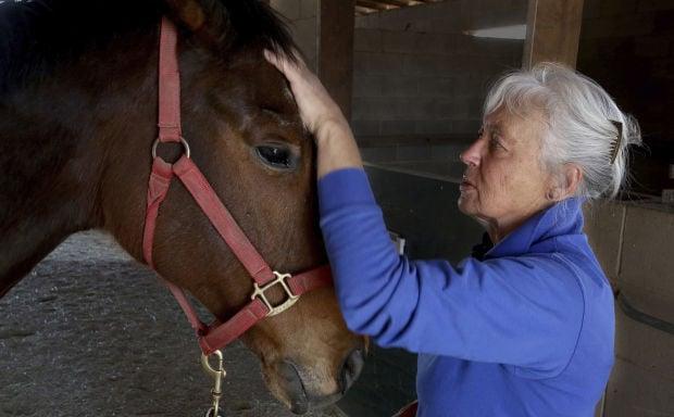 Celeste Kelly horse masseuse