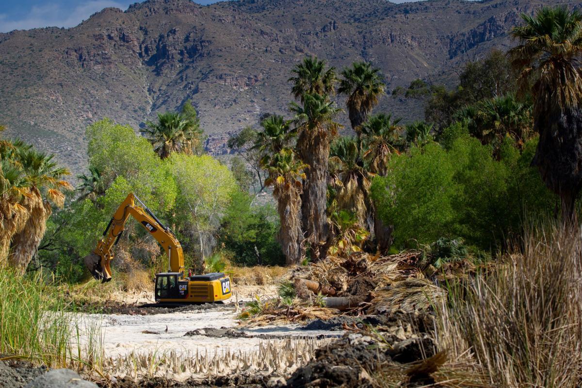 Agua Caliente Park work