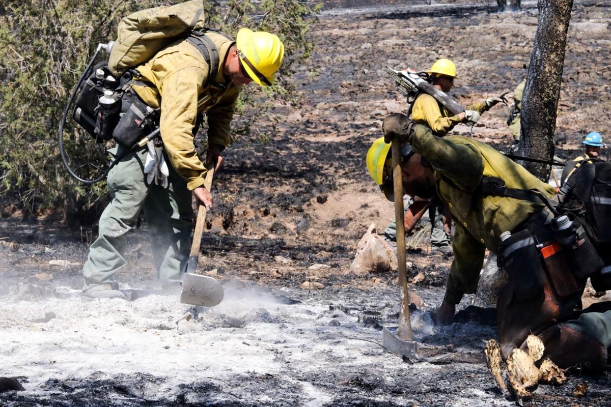 Encino Fire