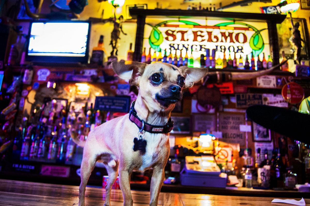 St. Elmo Bar in Bisbee
