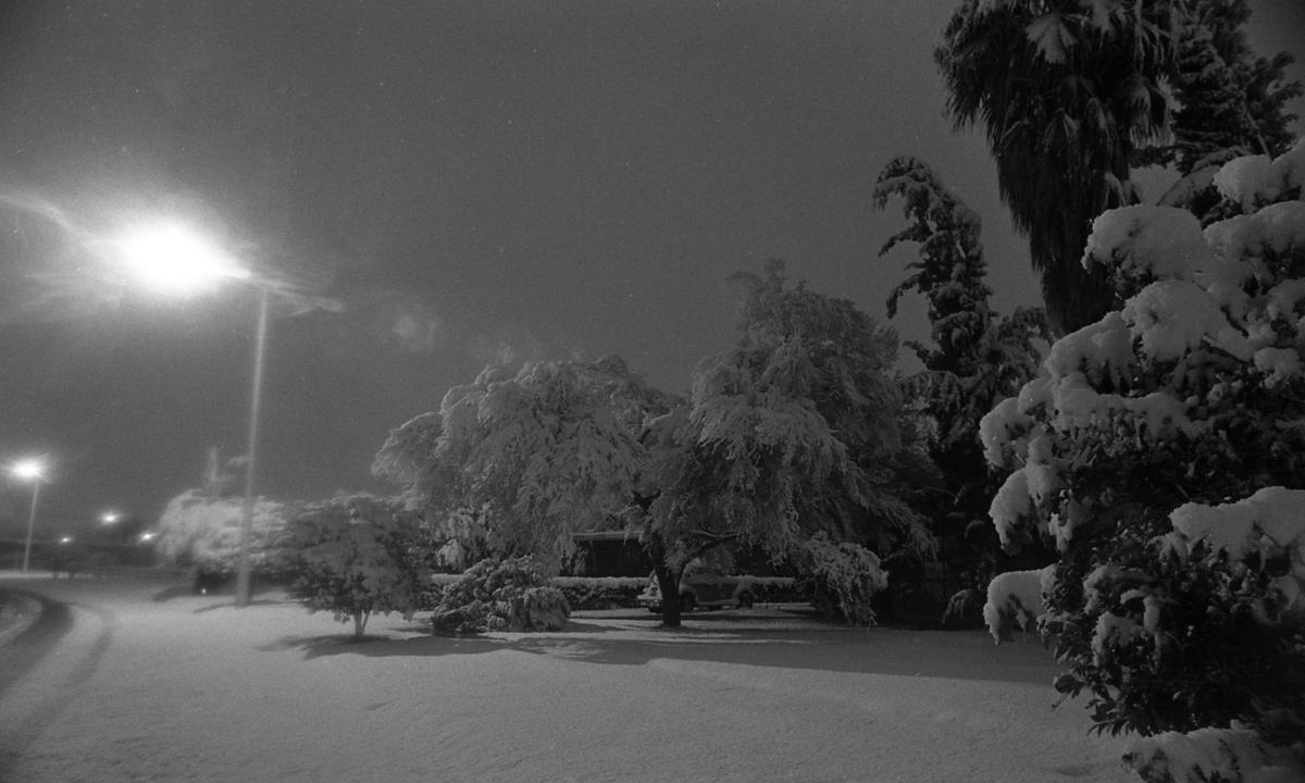 The day it snowed - a lot - in Tucson