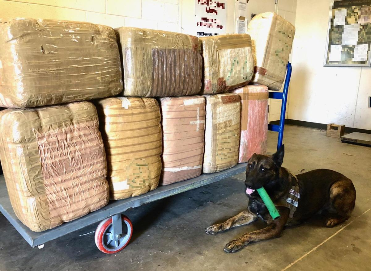 Animal Crossing Marshal Porn photos: border busts 2017 | crime | tucson