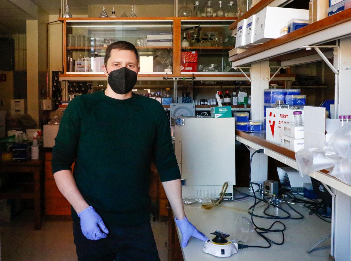 Michael Worobey, Department Head of Ecology and Evolutionary Biology, University of Arizona