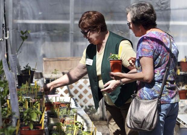 Pima County Master Gardener