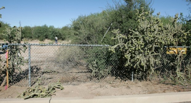 Wildlife preserve in the Foothills a Tucson Oddity