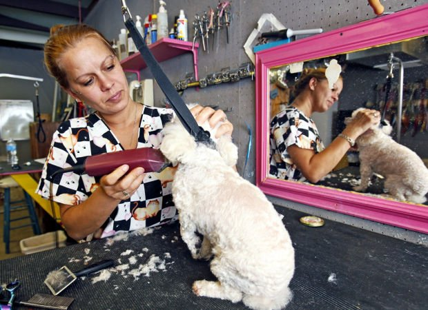 Solution: Program helps Tucson mom go from meth addict to business owner