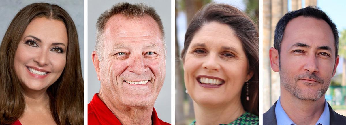 2020 Elections: Arizona LD10 House of Representatives