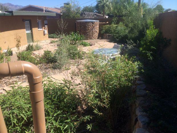 23 HL Waterharvest