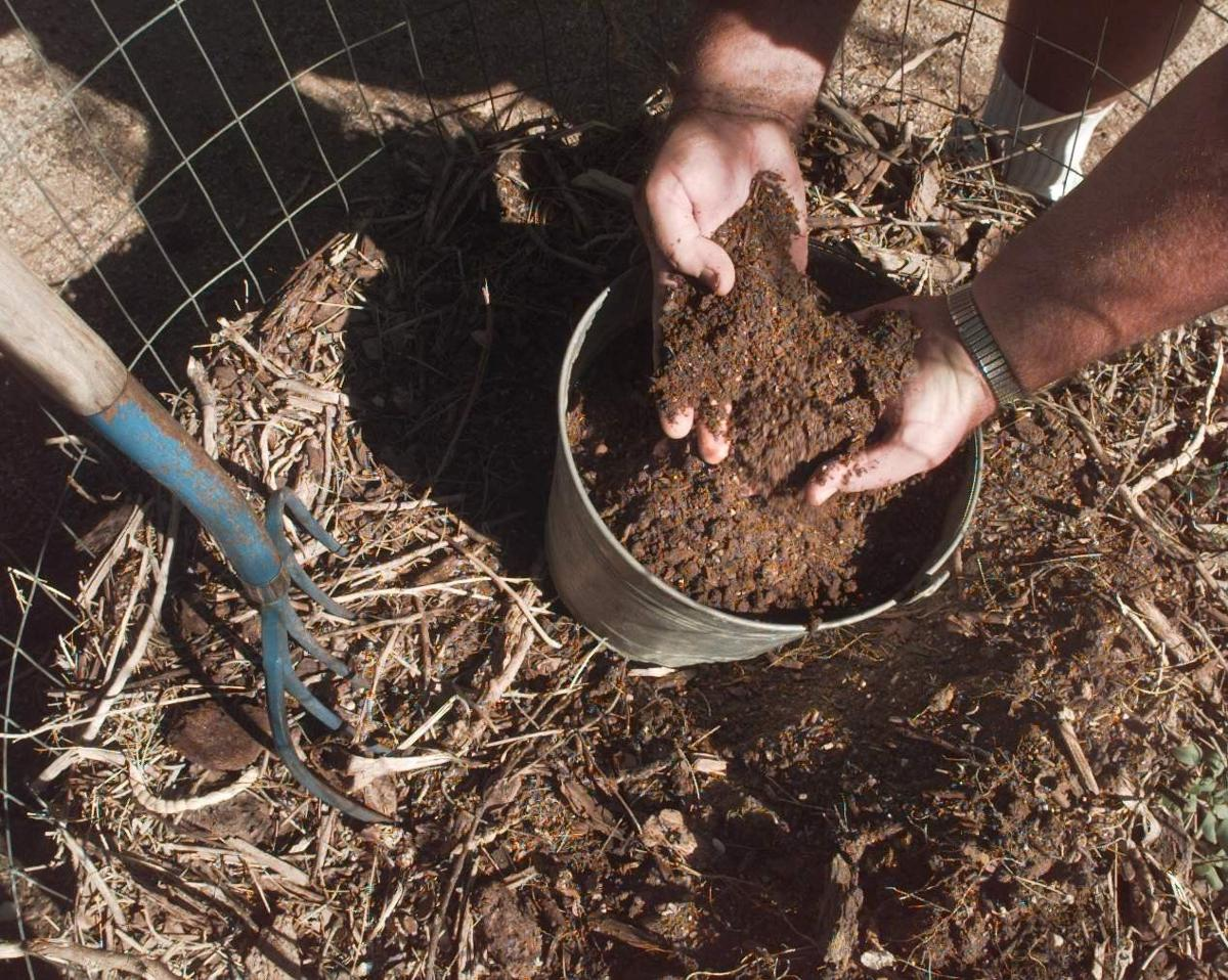 Composting: Choose the type of bin