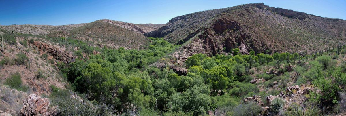 Pima County set to buy remote ranch for $1 55M to expand its park