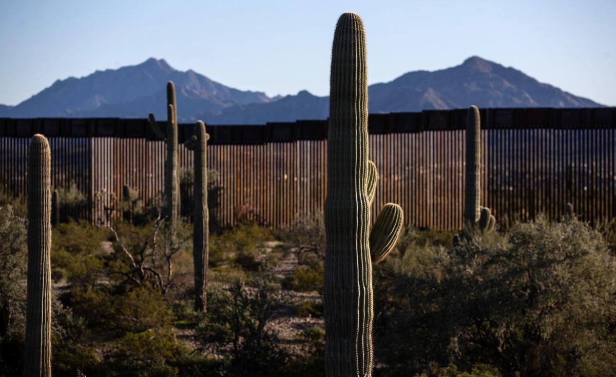 Border wall near Lukeville