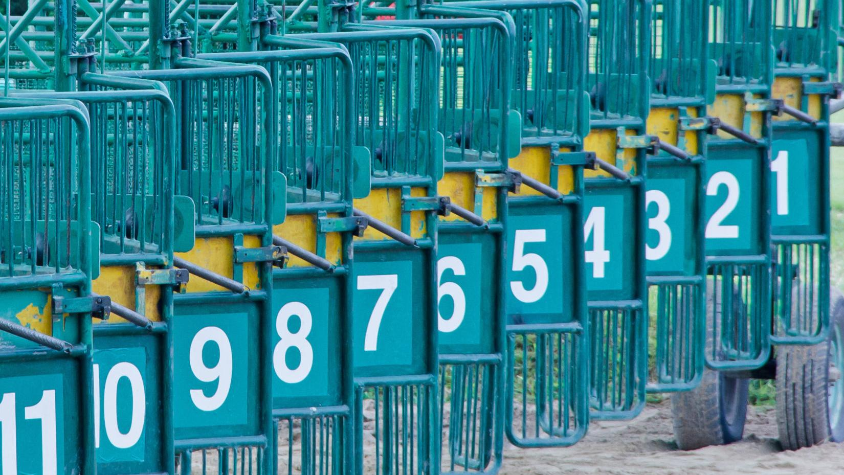 tucson off track betting